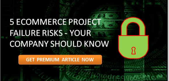 Why Hiring An Expert Is Important For Ecommerce Project