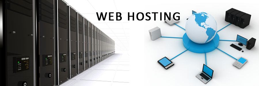 Web Hosting Issues to Consider | Vizteams
